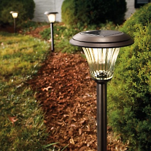 Solar powered lights are economical, easy to install, and save on your energy bills while nicely decorating your home and garden